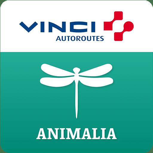 VINCI AUTOUROUTES – Application mobile de Réalité Augmentée